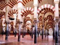 Un vistazo general de los aportes del Islam desde sus inicios hasta la época.jpg